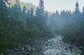 Rybl Potok au petit matin.<br> (Hautes Tatras - Pologne)