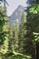 Vers Razcestle pod Temnyml Smrecinaml.<br> (Hautes Tatras)