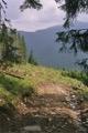 En route vers le Lacul Verde
