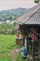 Cabanes dans les Maramures