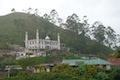 Mosqu�e