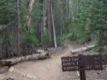 Chemin et panneau typiques du parc national de Yosemite