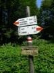Les chemins polonais sont tr�s bien balis�s