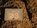 On suit le chemin (=sendero) n�23 pour relier au petit matin l