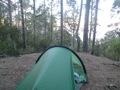 Bivouac dans les bois