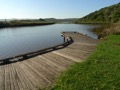 Gellibrand River