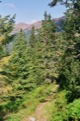 En descendant vers Razcestie pod Kasprovym.<br> (Hautes Tatras)