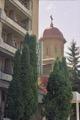 P�trosani