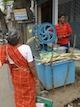 Sucre de canne a Madurai