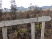On the Western Arthurs Trail.