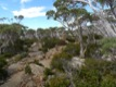Hobart, mont Wellington