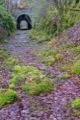Great Glen Way - Ancienne voie ferr�e